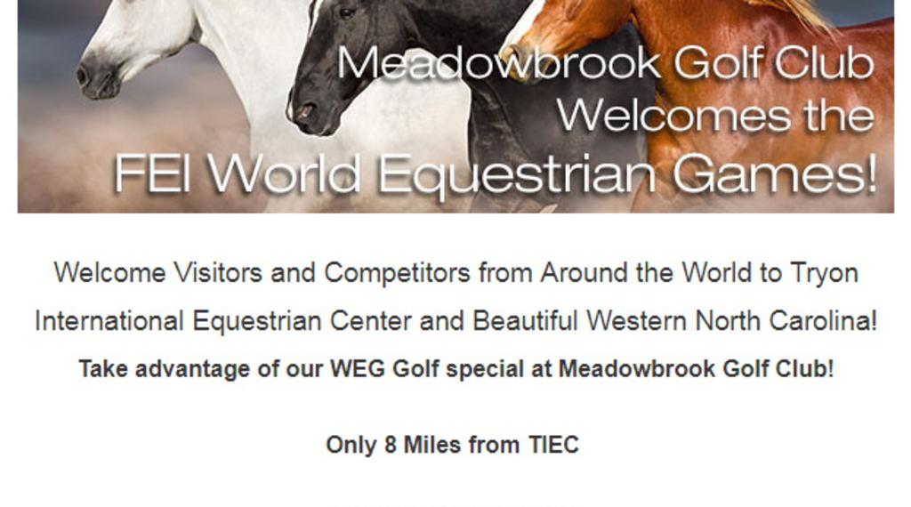World Equestrian Games Offer