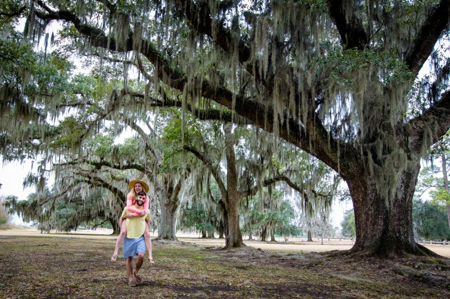 Piggybacking Fontainebleau State Park