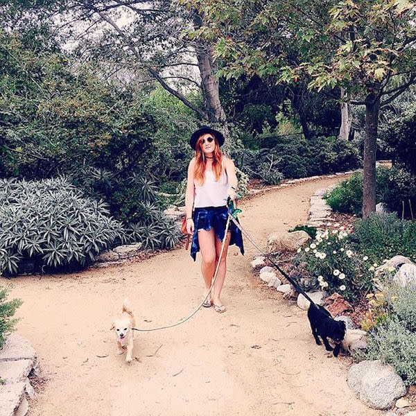 Central Park Dog Park by @shairussak