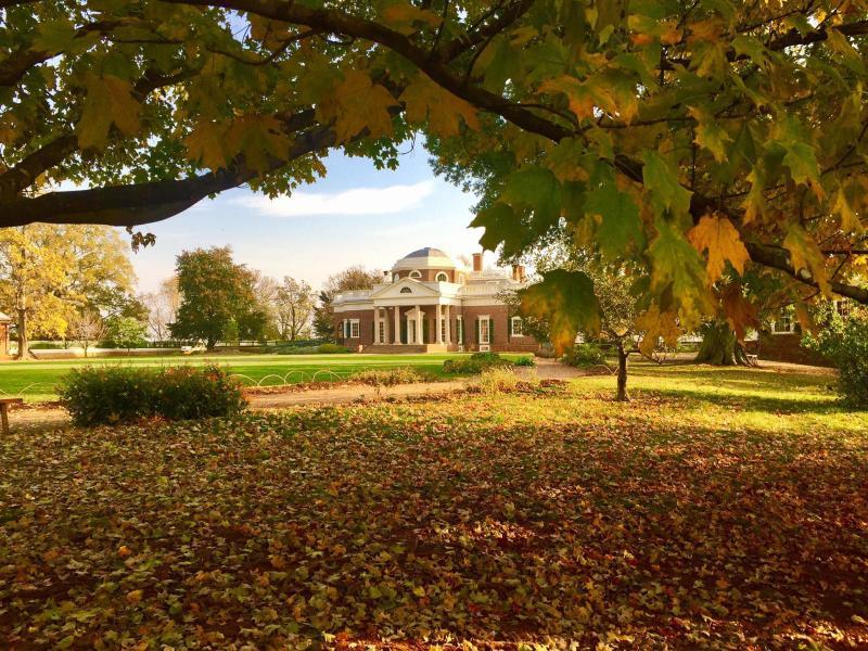 Monticello Fall