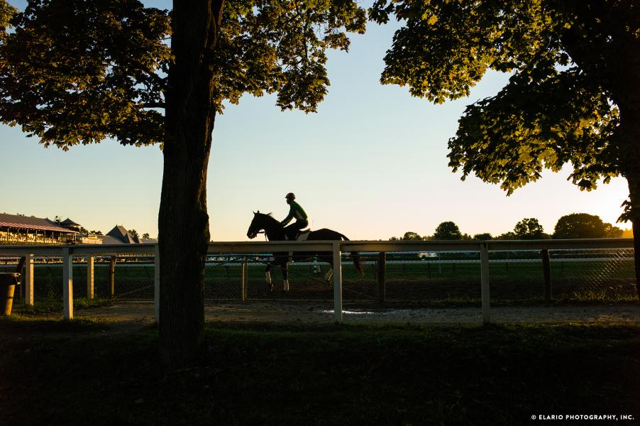 Horse and jockey at dusk at the Saratoga Race Course