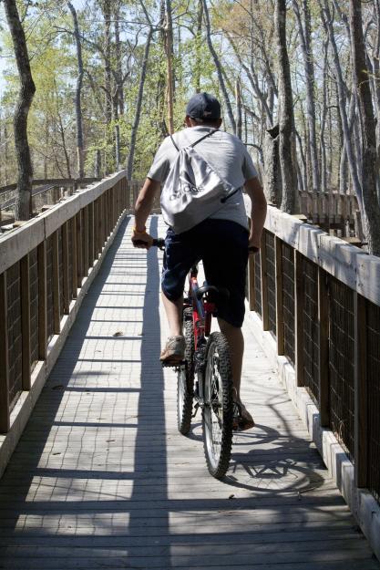 The bike trails at Sam Houston Jones State Park.