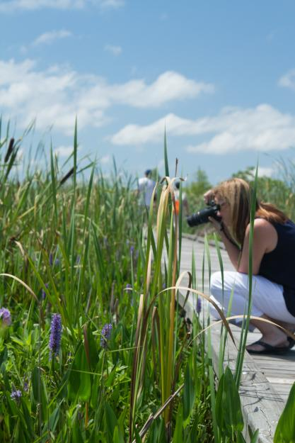 Photographer on Creole Nature Trial | Lake Charles, Louisiana