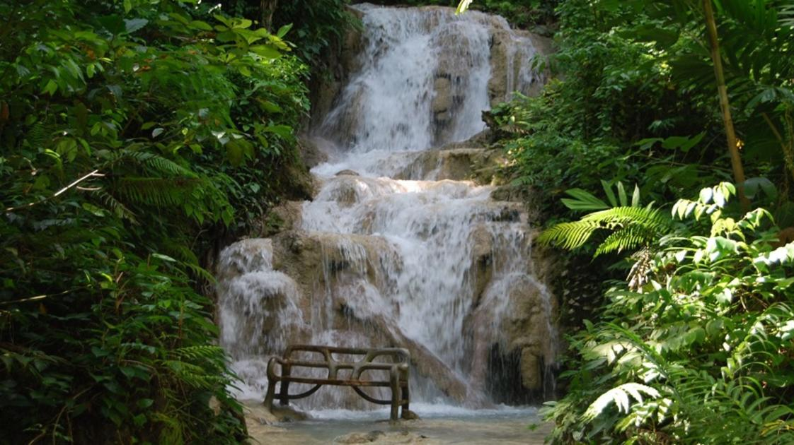 Orchid Falls-gallery