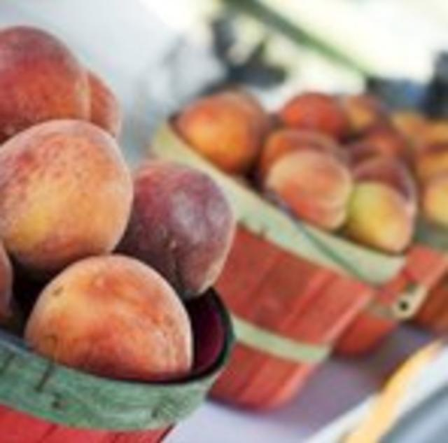 Thompson Orchard Peaches