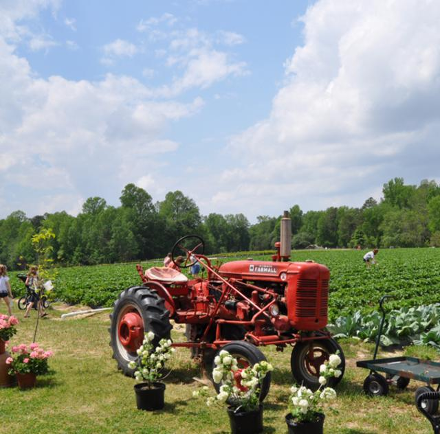 Smith's Nursery Tractor
