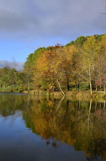 Bedford County Lake - Fall Photo