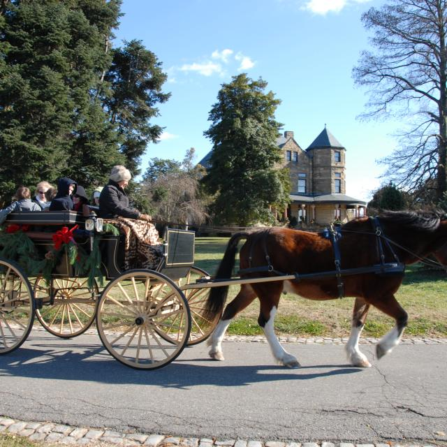 Maymont Holiday Carriage Ride