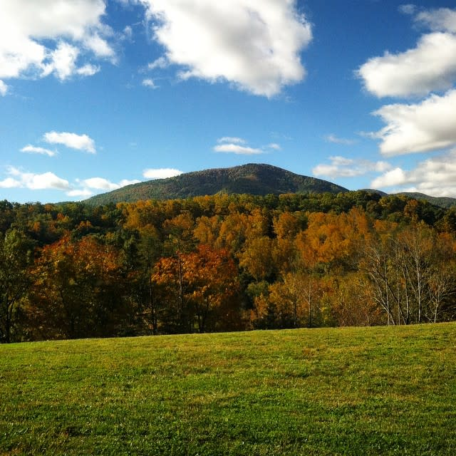 Bent Mountain Fall - Fall Photo