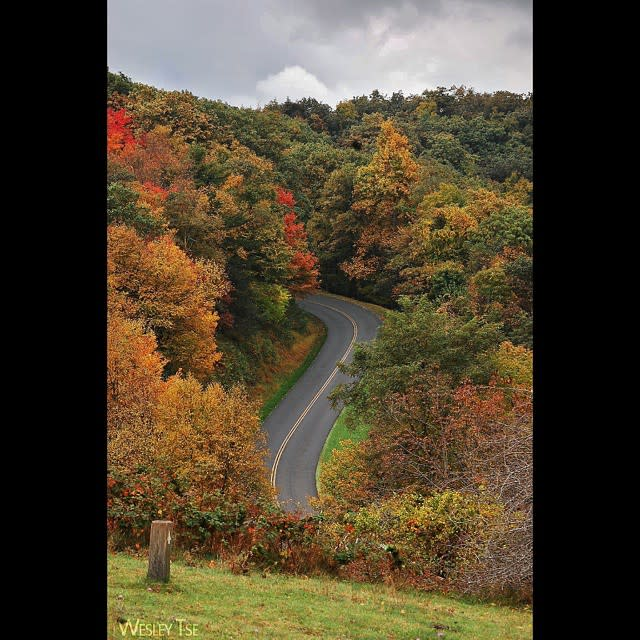 Blue Ridge Parkway Road - Fall Photo