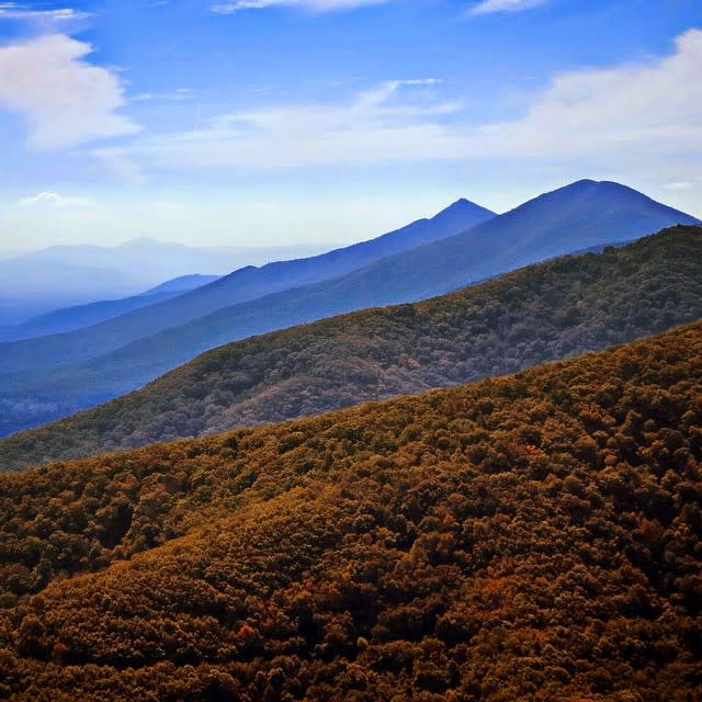 Blue Ridge Mountains Fall - Fall Photo