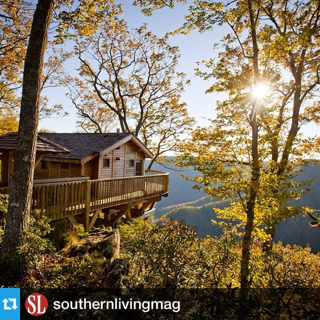 Primland Treehouse Fall - Fall Photo