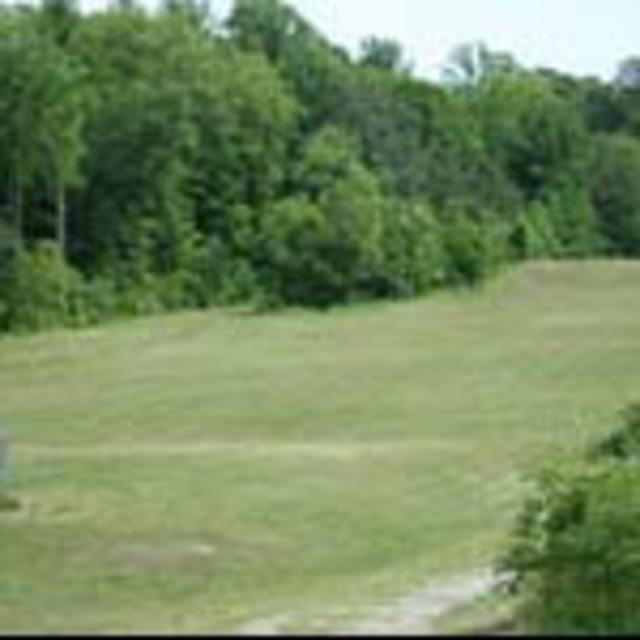 Goyne Park Disc Golf
