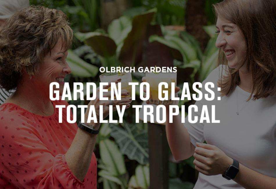 Olbrich Garden to Glass Experience