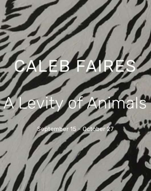 A Levity of Animals by Caleb Faires
