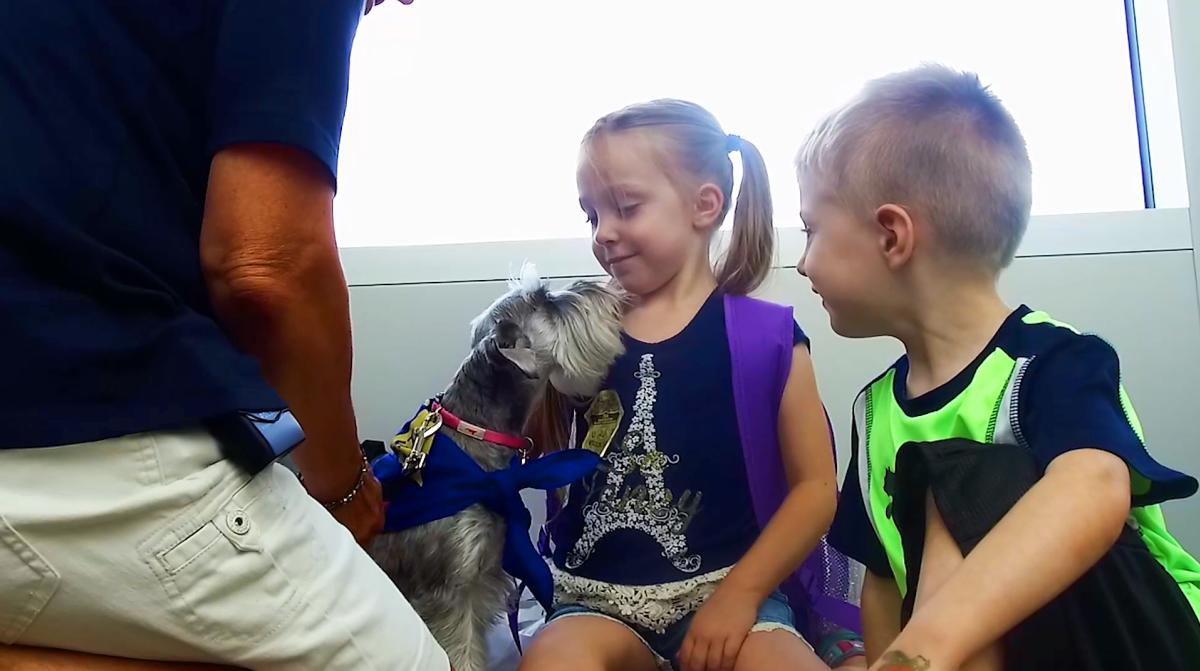Caring Tails Pet Therapy Program at Rochester MN International Airport