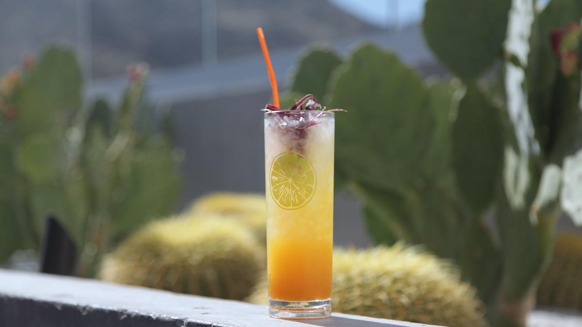 Cocktail at High Bar
