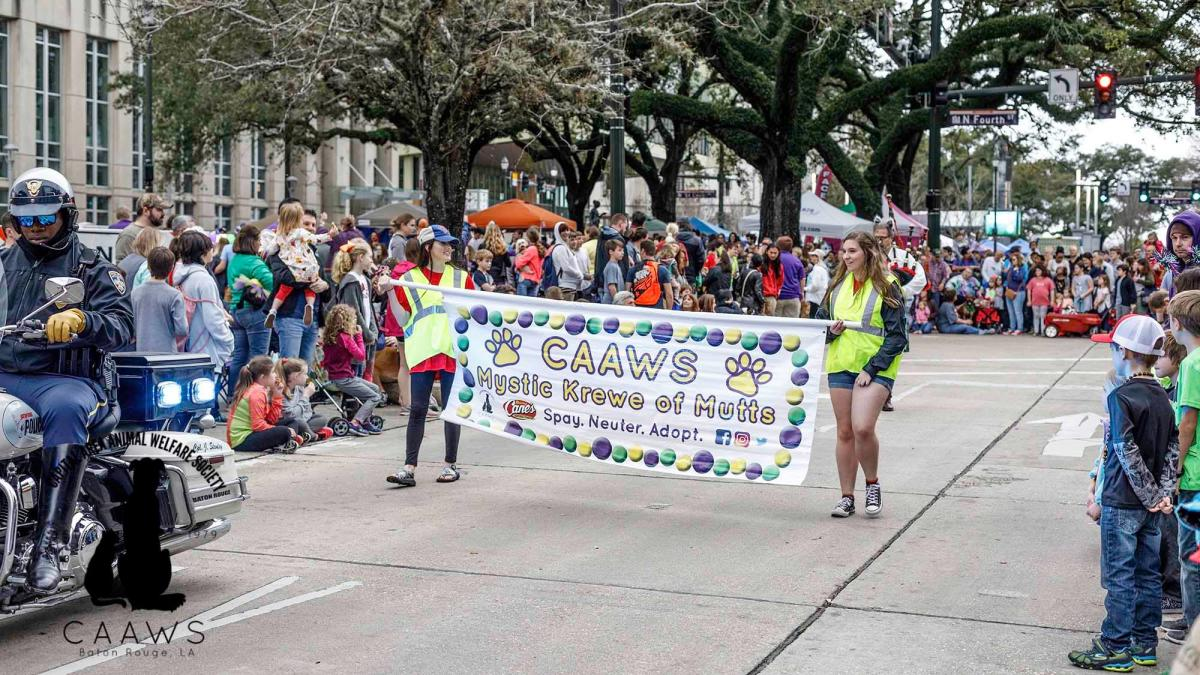 Mystic Krewe of Mutts Parade