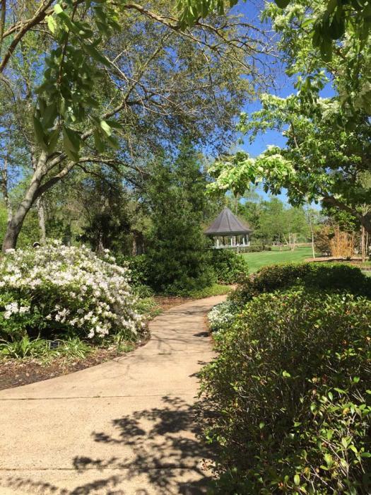 Beaumont Botanical Gardens Gazebo