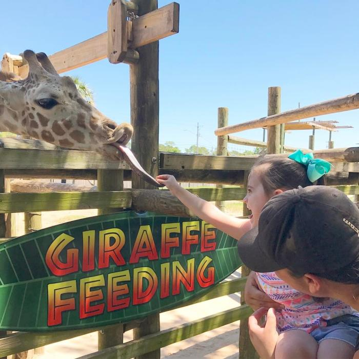 Kid's Rule Gulf Breeze Zoo
