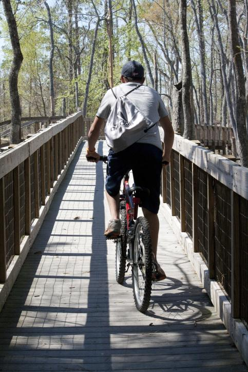The bike trails at Sam Houston Jones State Park.