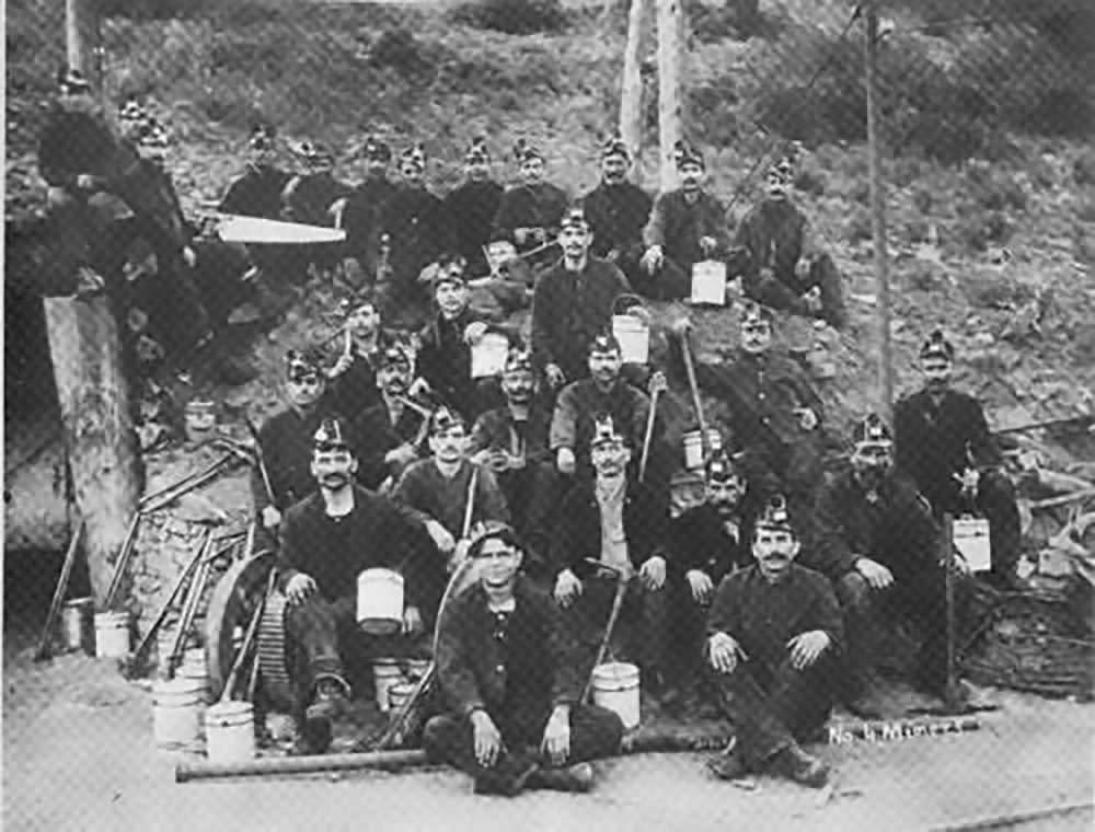 Dawson Miners