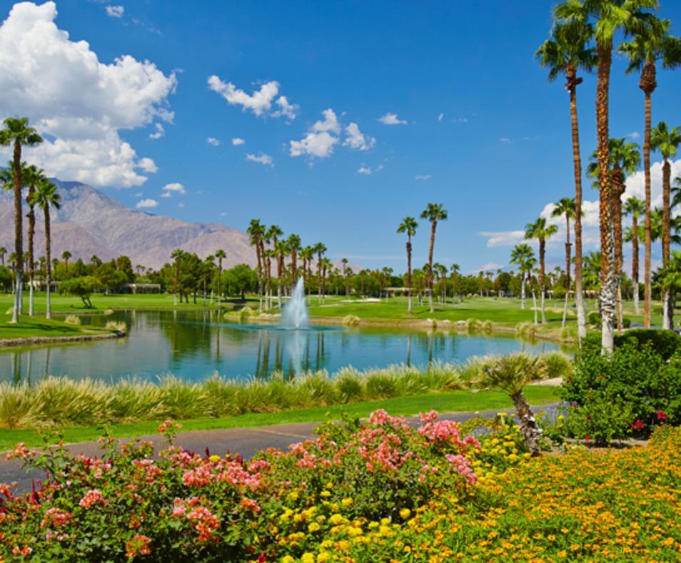 Scenic golf course view