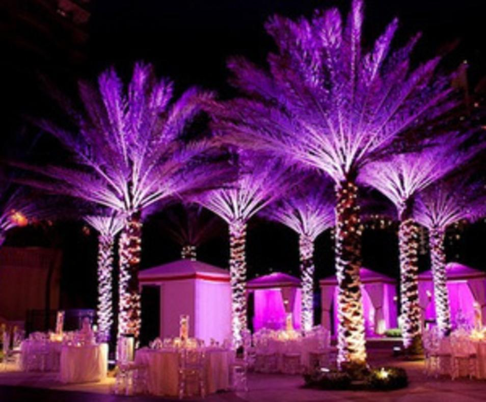 VIP Palm Springs Event Planner