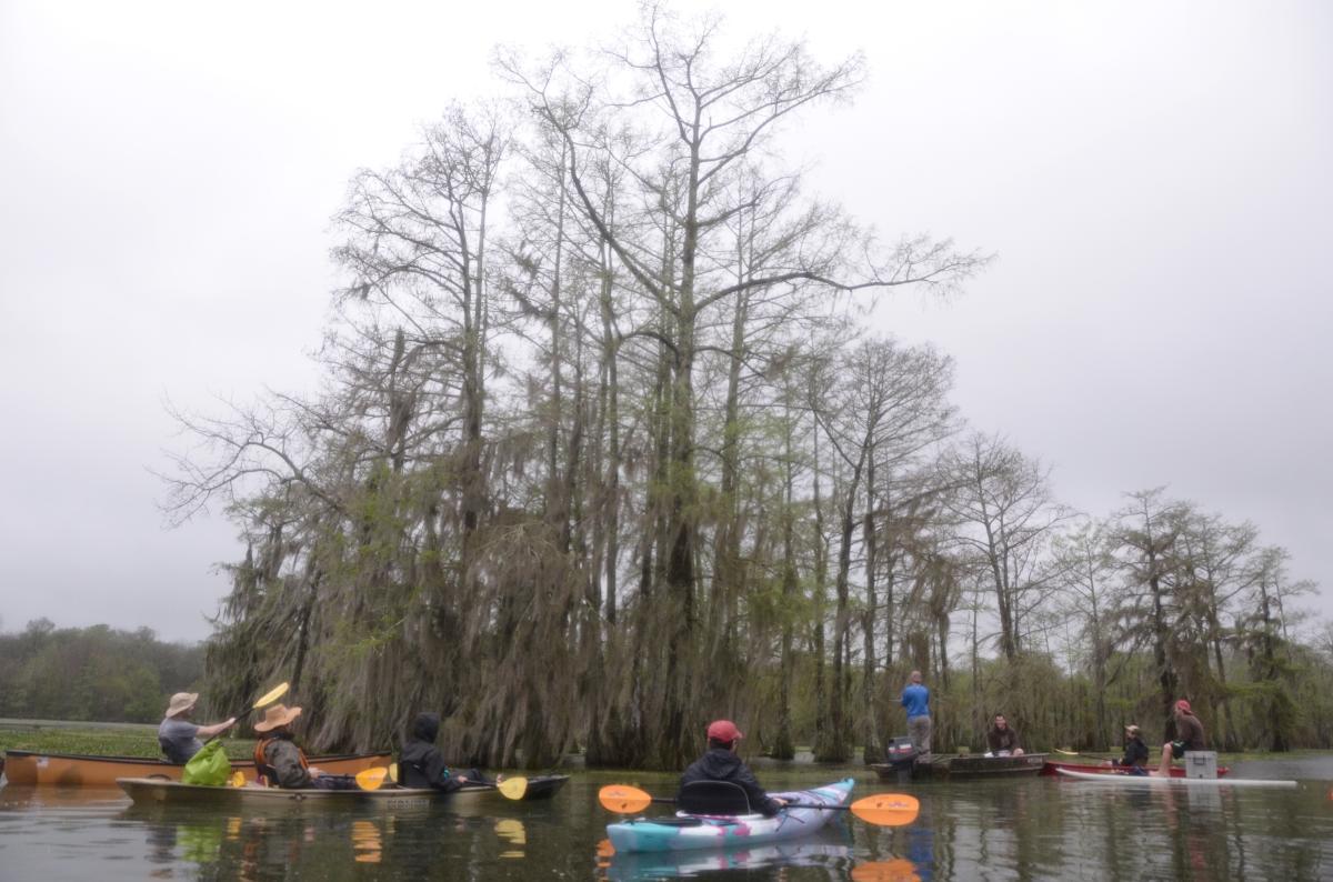 Bayou Vermilion Excursion: Paddlers at Lake Martin