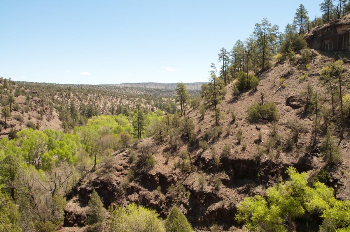 Blue Range Wilderness
