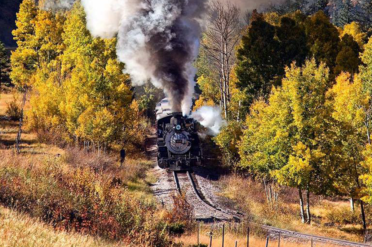 Ride the Fall Trains