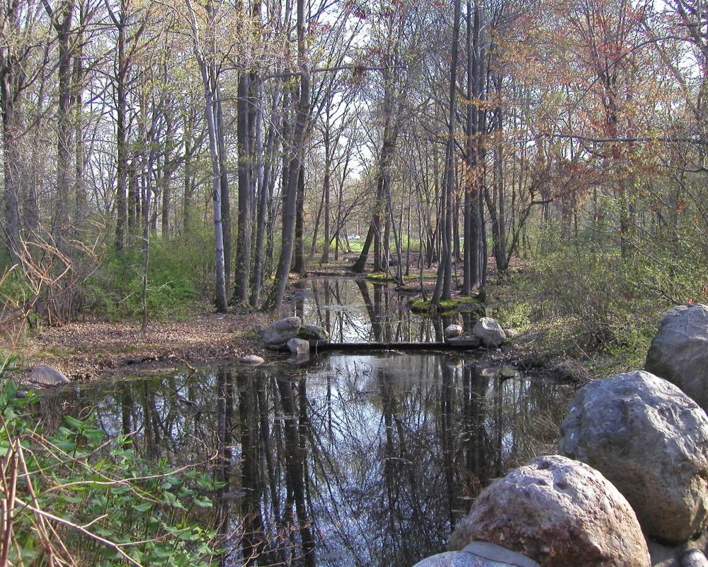 Branch Brook Creek