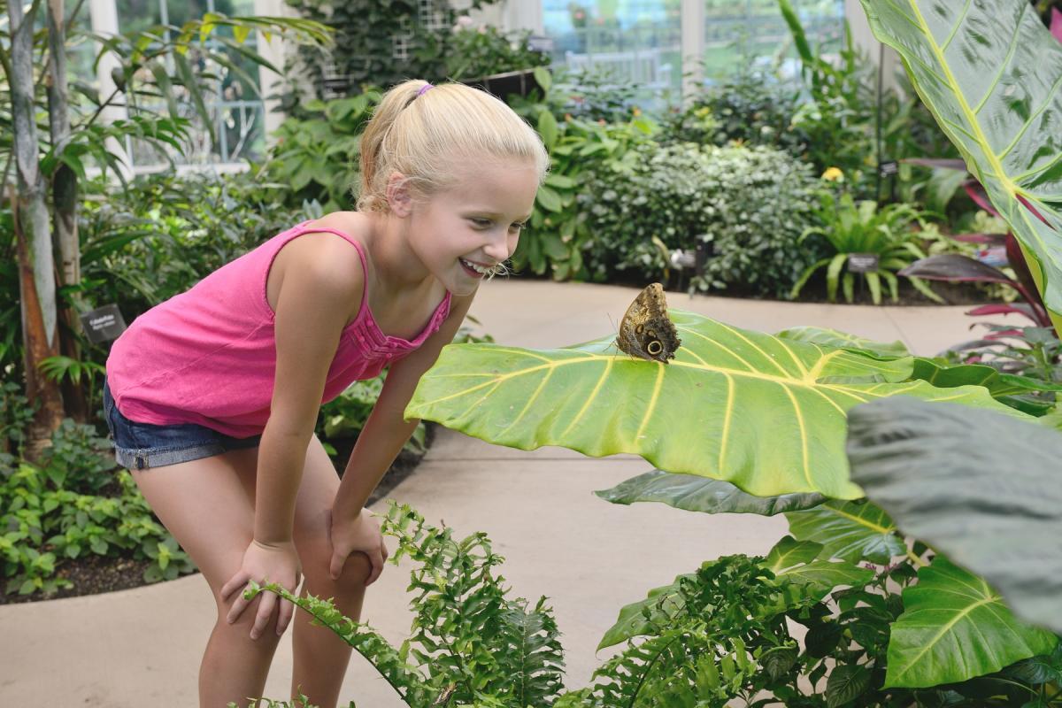 Hershey Conservatory -Butterfly Atrium (2)