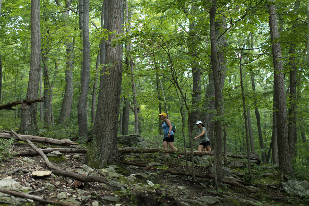 Two people hiking Catoctin Mountain Park