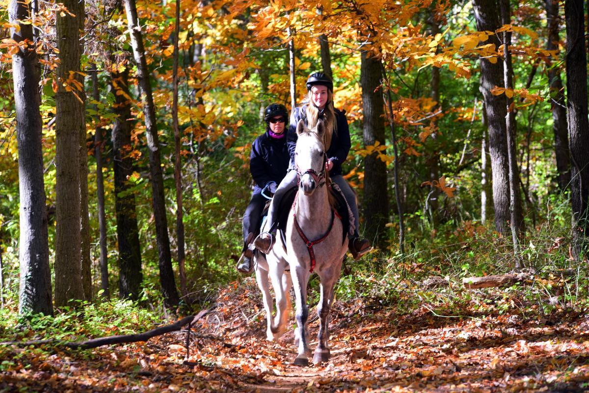 Horseback Riding in Evansburg State PArk