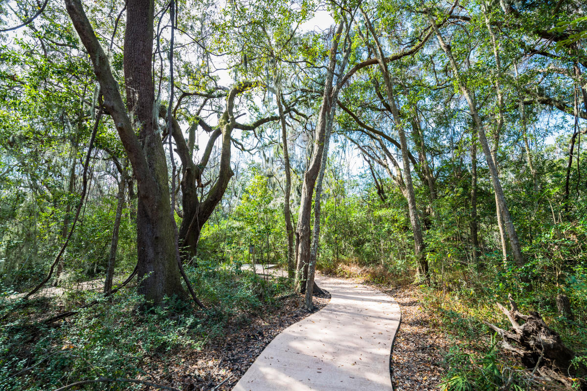 A shaded and paved pathway meanders through the Southeast Georgia Health System Trail on St. Simons Island, Georgia