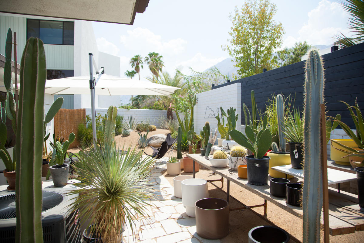 The BackYard at The Shops at Thirteen Forty Five