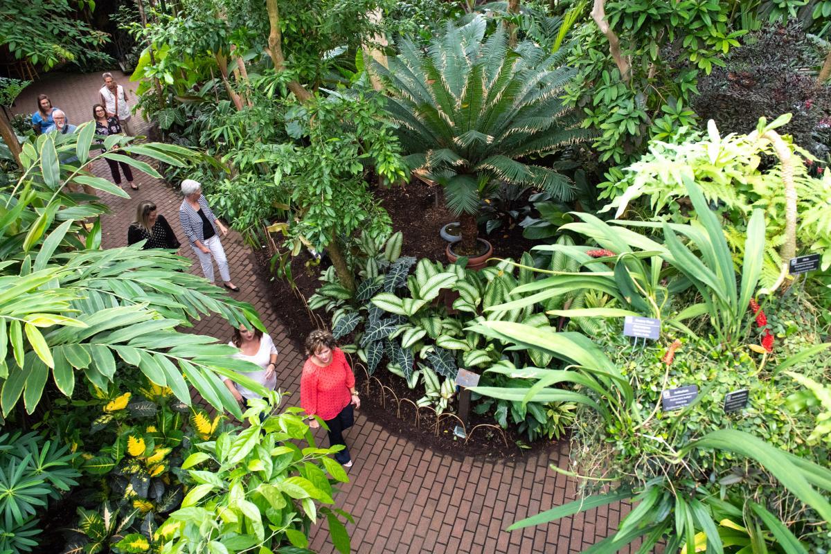 Olbrich Tropical Thumb #4