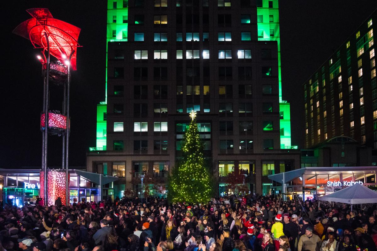 Downtown Raleigh Tree Lighting