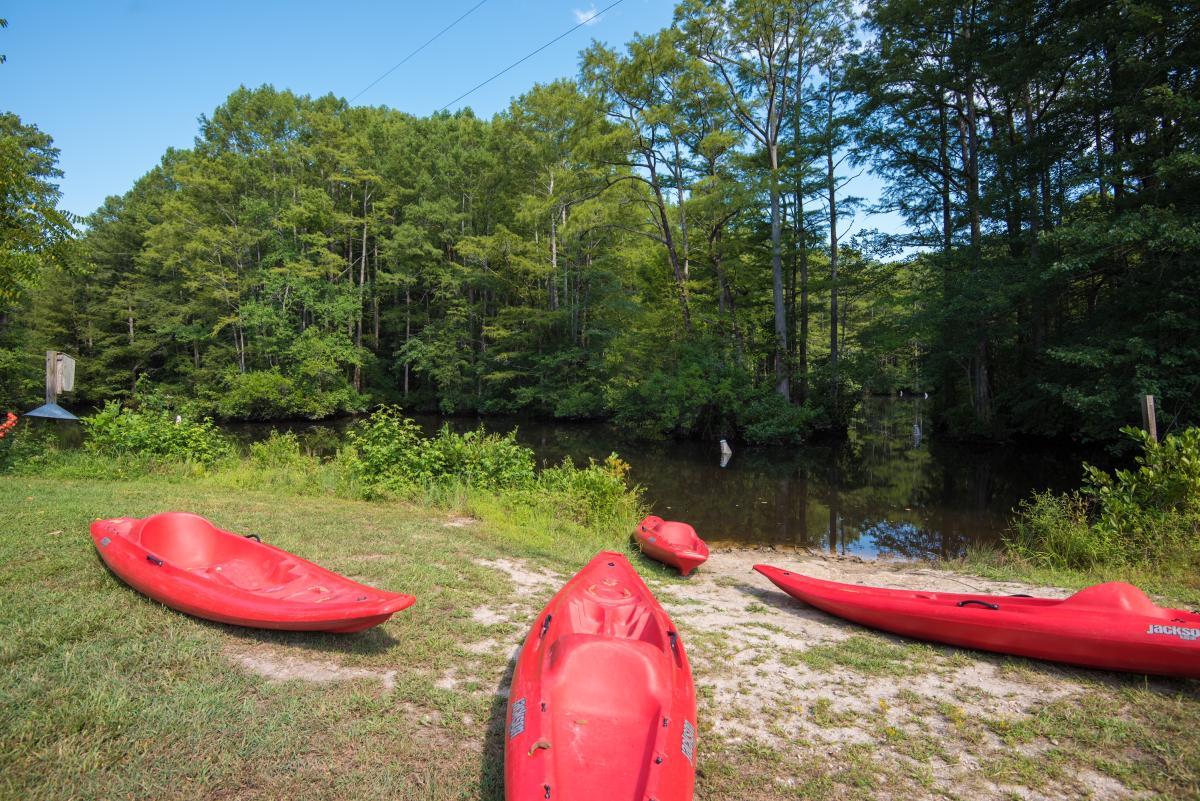 Robertson Millpond Kayak