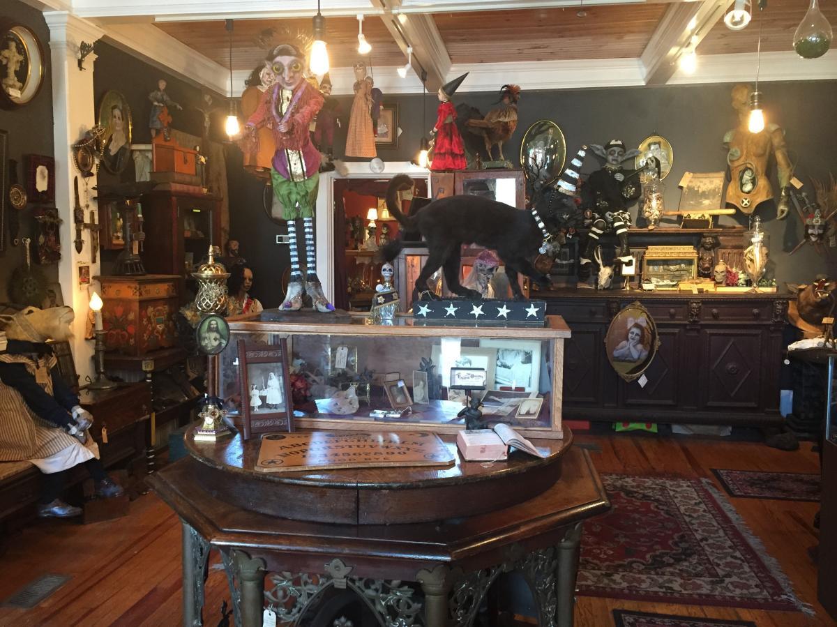 Creeper Gallery from front door