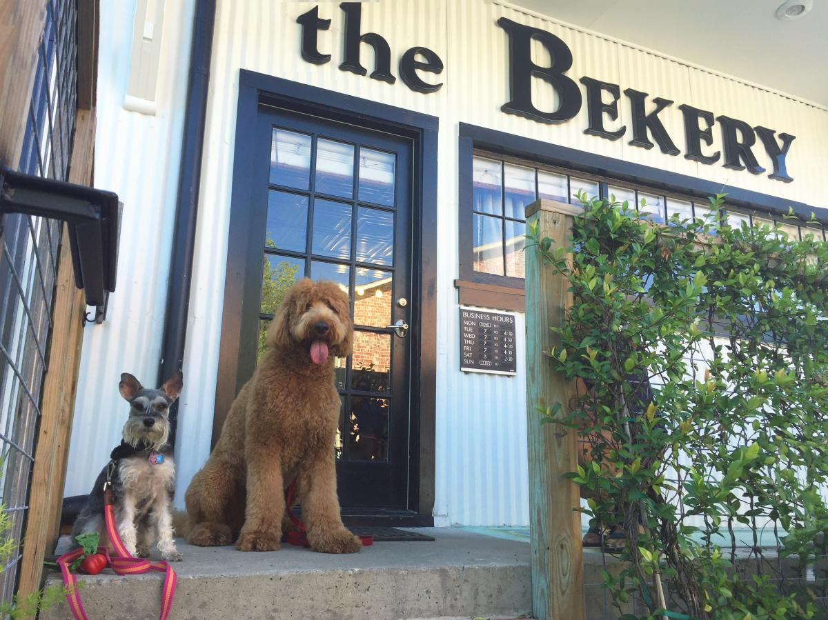The Bekery - Ellie Mae & Cooper