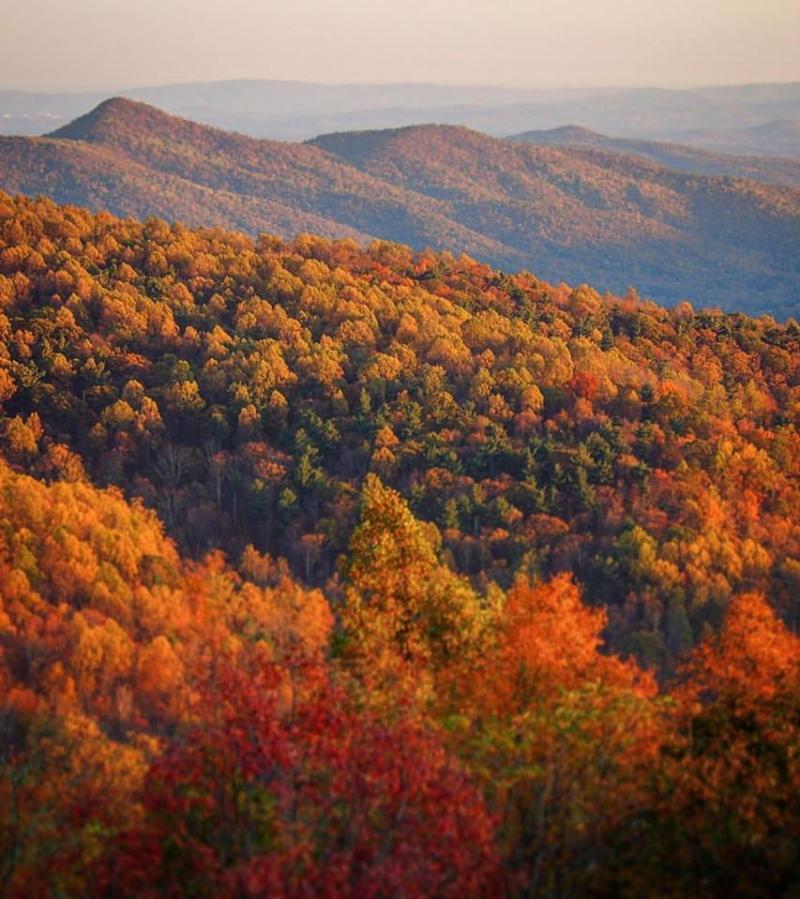 Shenandoah National Park Fall