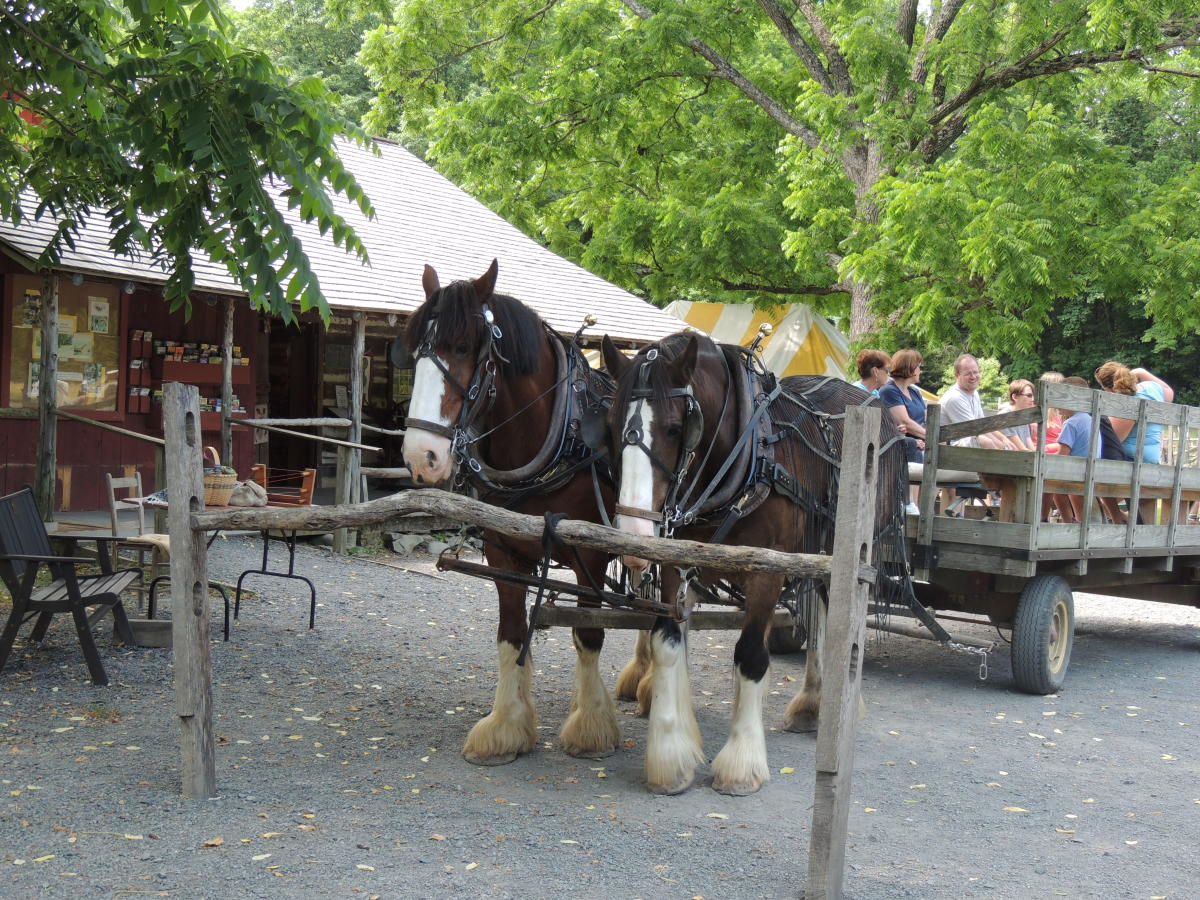 Take a Wagon Ride at Quiet Valley