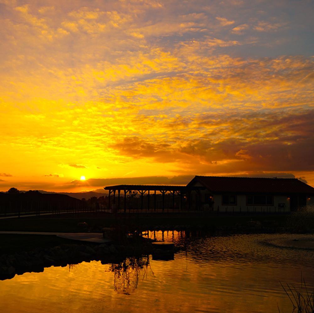 Avensole Winery Sunset