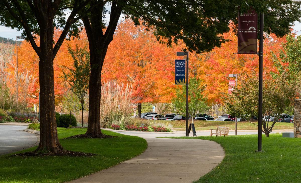 North Carolina Arboretum Fall 2017