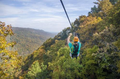Navitat Canopy Adventures in Fall