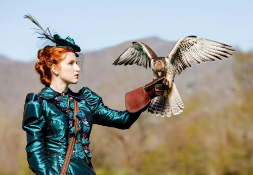 Falconry in Serafina
