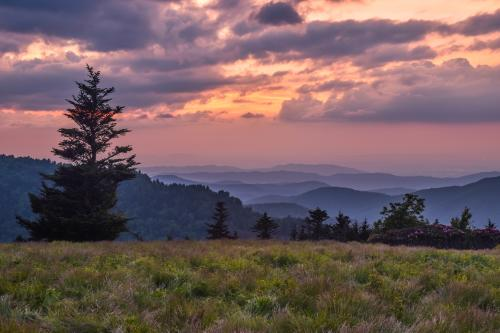 Roan Mountain Sunset