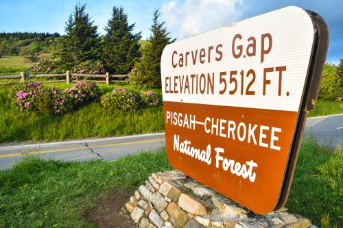 Carver's Gap Sign at Roan Mountain